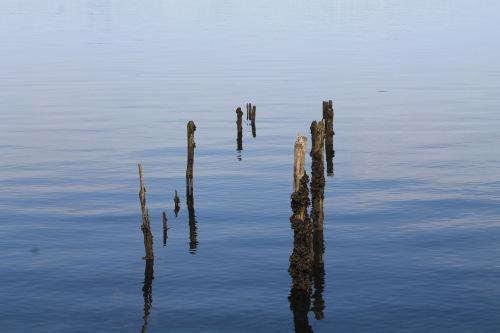 more-pier