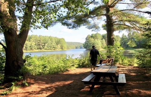 picnicgrounds